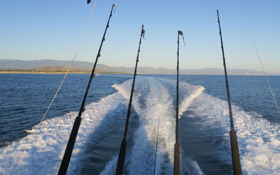 Baja Sport Fishing Mexico Sea of Cortez